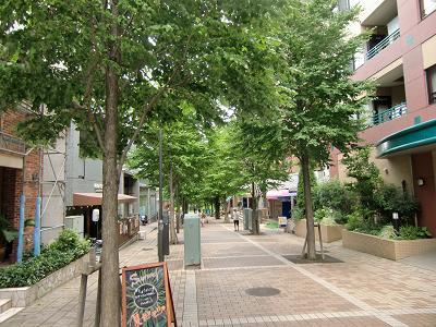 横浜市都筑区の公園1
