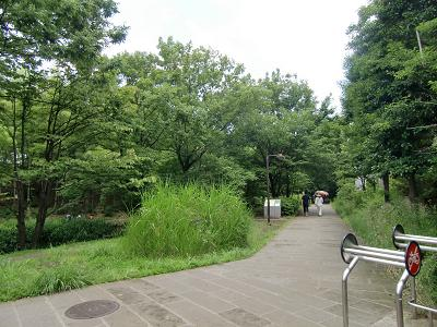 横浜市都筑区の公園2