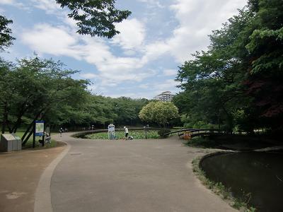 横浜市都筑区の公園4