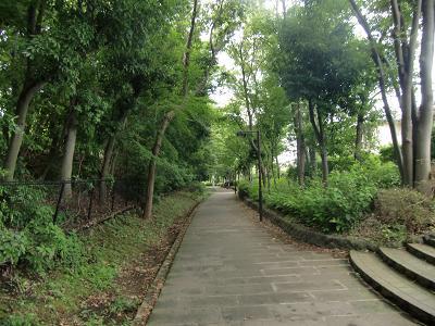 横浜市都筑区の公園7