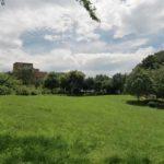横浜市都筑区の公園8