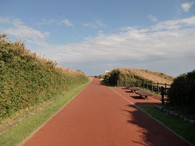 城ケ島公園4