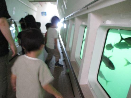船の下のフロア