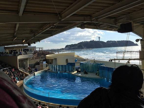 江の島が見えるショー会場