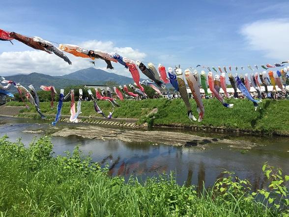 鈴川の鯉のぼり2