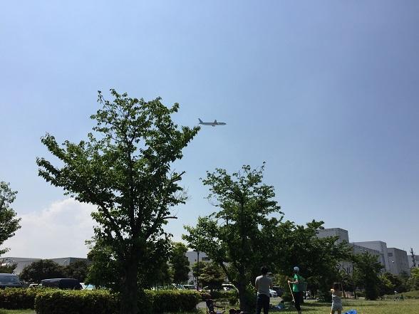 城南島海浜公園の上を飛ぶ飛行機
