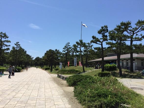公園のメインストリート