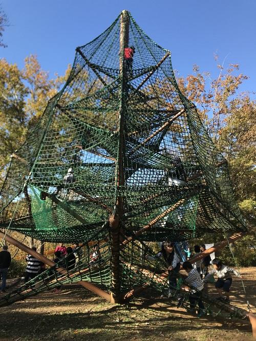 網のツリー
