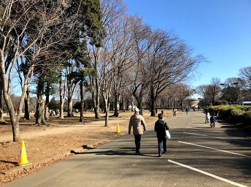 小金井公園の中