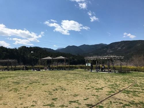 昼食場所の見晴らしの丘