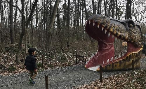 ティラノサウルスの口のトンネル