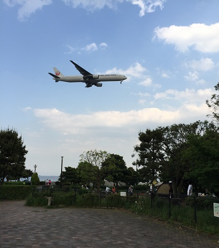 午後の着陸する飛行機